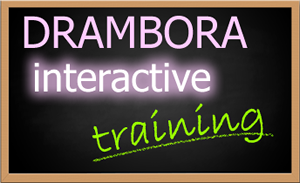 DRAMBORA Training